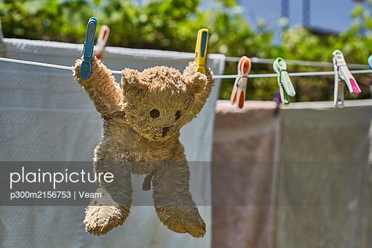 Teddy bear hanging on a clothesline - p300m2156753 von Veam
