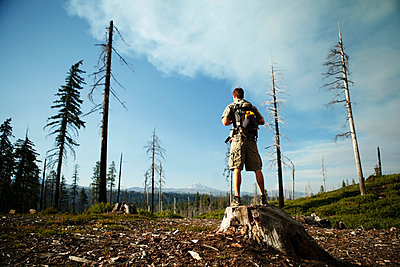 Rear view of male hiker standing on tree stump at field against sky - p1166m1164265 by Cavan Images