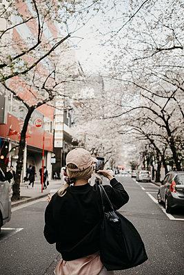 Japan, Tokio, Chidorigafuchi Park, cherry blossom on Sakura Road - p300m2103493 by letizia haessig photography
