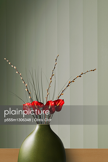 Flowers blooming in modern vase - p555m1306348 by Chris Clor