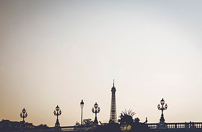 Eiffel Tower and bridge - p1150m1201811 by Elise Ortiou Campion