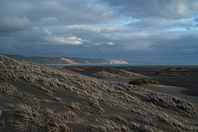 Coastal dunes - p1369m1496120 by Chris Hooton