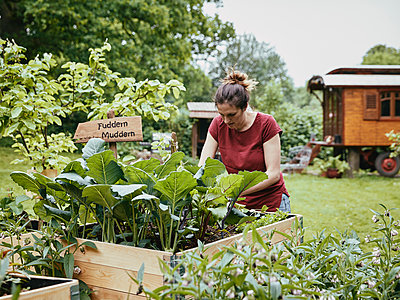 Woman at the raised bed - p962m2175411 by Robert Schlossnickel