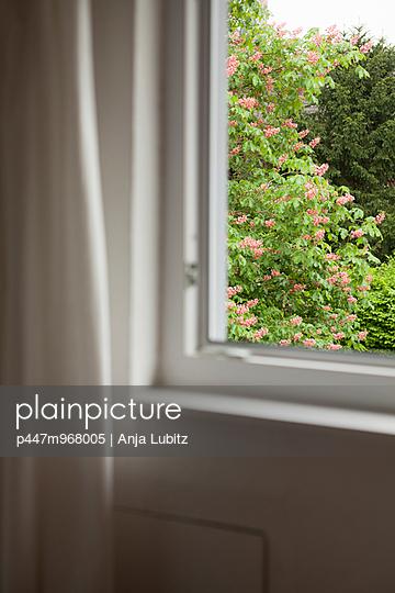Blick ins Grüne - p447m968005 von Anja Lubitz