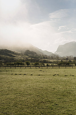 Pasture and mountains in the fog - p1477m2038975 by rainandsalt