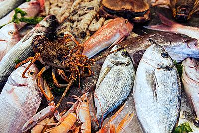 Auf dem Fischmarkt - p081m881384 von Alexander Keller