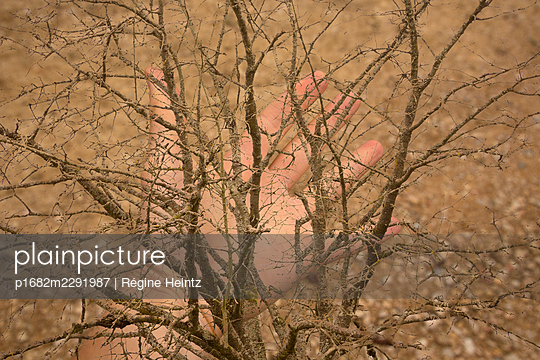Hand with spread fingers and tree - p1682m2291987 by Régine Heintz