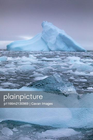 Iceberg details - p1166m2130969 by Cavan Images