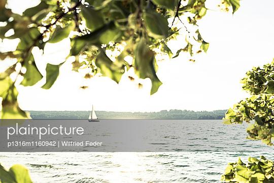 Starnberger See im Gegenlicht, Berg, Oberbayern, Bayern, Deutschland - p1316m1160942 von Wilfried Feder