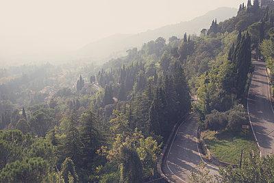 The Mountain Road - p1323m2026178 von Sarah Toure