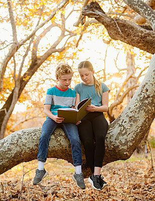 United States, California, Mission Viejo, Boy (10-11) and girl (12-13) sitting on tree branch and reading book - p1427m2271660 by Erik Isakson