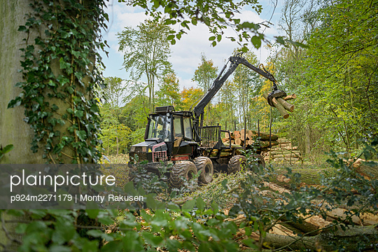 Log carrying machine stacking logs in sustainable forest - p924m2271179 by Monty Rakusen