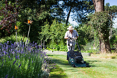 Senior man mows garden lawn, Bournemouth, County Dorset, UK, Europe - p1026m996450f by Patrick Frost