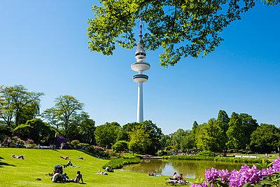 Planten un Blomen, park and television tower - p488m1048448 by Bias