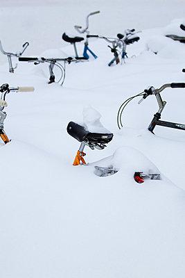 Deep winter - p7390383 by Baertels