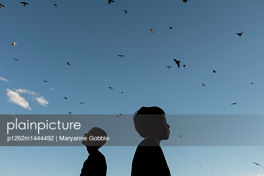 Birds and Brothers - p1262m1444492 by Maryanne Gobble