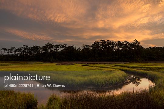 Sunrise over marshland, North Carolina - p1480m2228741 by Brian W. Downs
