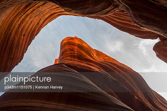 p343m1151075 von Kennan Harvey