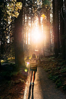 Woman with backpack hiking in the forest at sunset in Sequoia National Park, California, USA - p300m2139911 by Gemma Ferrando