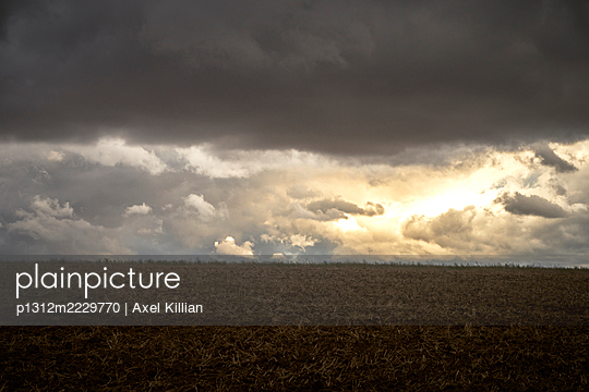 Germany, Field after a thunderstorm - p1312m2229770 by Axel Killian