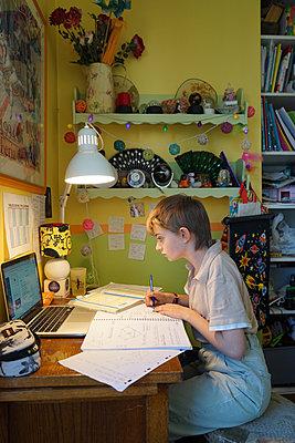 Home schooling during lockdown - p1610m2260897 by myriam tirler