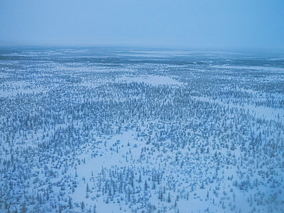 Aerial view, Taiga and Tundra in winter - p390m2126661 by Frank Herfort