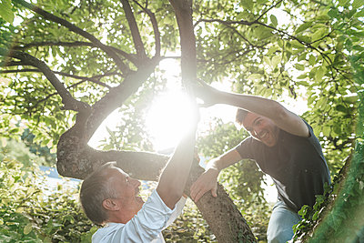 Cheerful son climbing tree while giving high-five to father during sunny day - p300m2275165 by Gustafsson