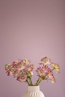 Romantischer Blumenstrauß - p454m1030927 von Lubitz + Dorner