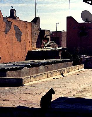 Dachterrasse in Marrakesch - p754m658094 von Valea Diller-El Khazrajy