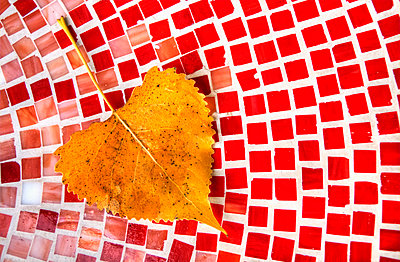 Birch Leaf on Tile Table - p1331m1169242 by Margie Hurwich