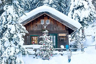 Austria, Altenmarkt-Zauchensee, Christmas tree at wooden house in snow - p300m2060153 by Hans Huber