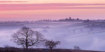 Mist shrouded countryside looking towards the village of Morchard Bishop in winter, Devon, England, United Kingdom, Europe - p871m993821 by Adam Burton