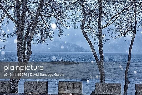 p343m1168276 von David Santiago Garcia