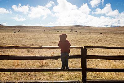 Little boy climbing on pasture fence - p756m1461733 by Bénédicte Lassalle
