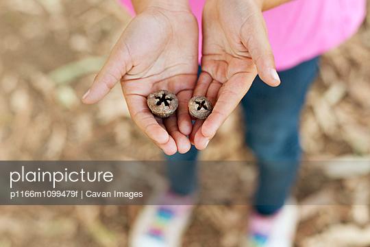 p1166m1099479f von Cavan Images
