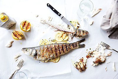 Grilled fish, leftover food - p938m1050192 by Christina Holmes
