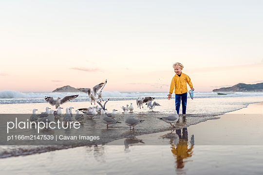 Happy little boy sharing snacks with seagulls - p1166m2147539 by Cavan Images