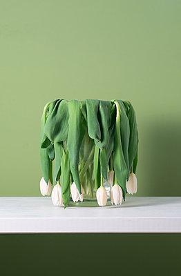 Welke Tulpen - p553m2183612 von Christine Basler