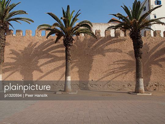Palmen vor der Stadtmauer - p1320594 von Peer Hanslik