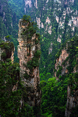 Zhangjiajie National Forest Park, China - p523m1148688 von Lisa Kimmell