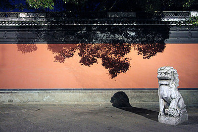 Chinese Lion Statue - p664m721085 by Yom Lam