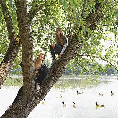 Zwei Mädchen sitzen in einem Baum am Seeufer - p1376m2101098 von Melanie Haberkorn