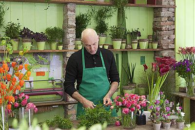 Mature man gardening plant - p301m1102127f by Halfdark
