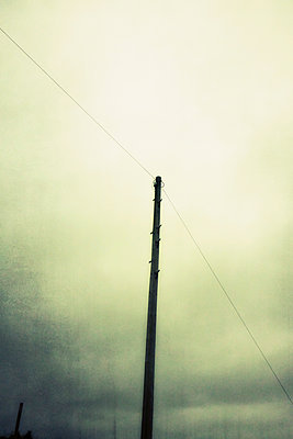 Telephone cable and pole - p597m1214942 by Tim Robinson