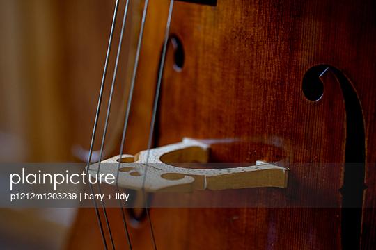 Celli beim Geigenbauer - p1212m1203239 von harry + lidy