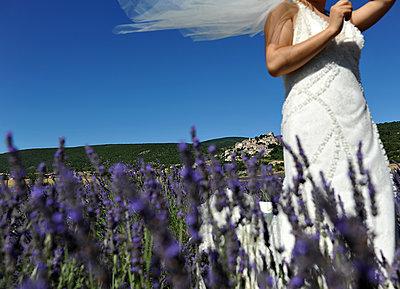 Braut im Lavendelfeld - p1468m1527650 von Philippe Leroux
