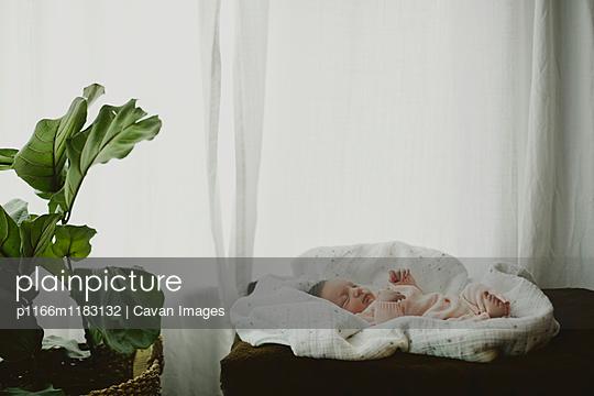 p1166m1183132 von Cavan Images