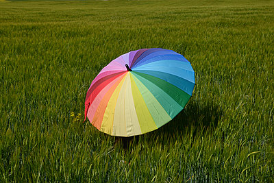 High angle view of colorful umbrella on grassy field - p1166m2035530 by Cavan Social