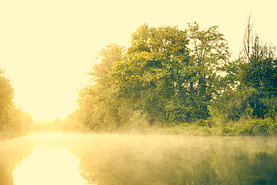 River bank in the morning in the fog - p1312m2258010 by Axel Killian