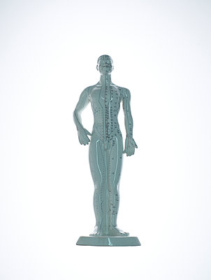 Human modell - p1318m2031952 by Tom Seelbach